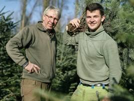 Adventszeit: Nachhaltige Weihnachtsbäume aus Hilden